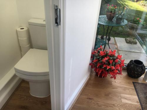 compact ground floor toilet