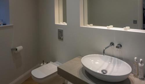 toilet extension